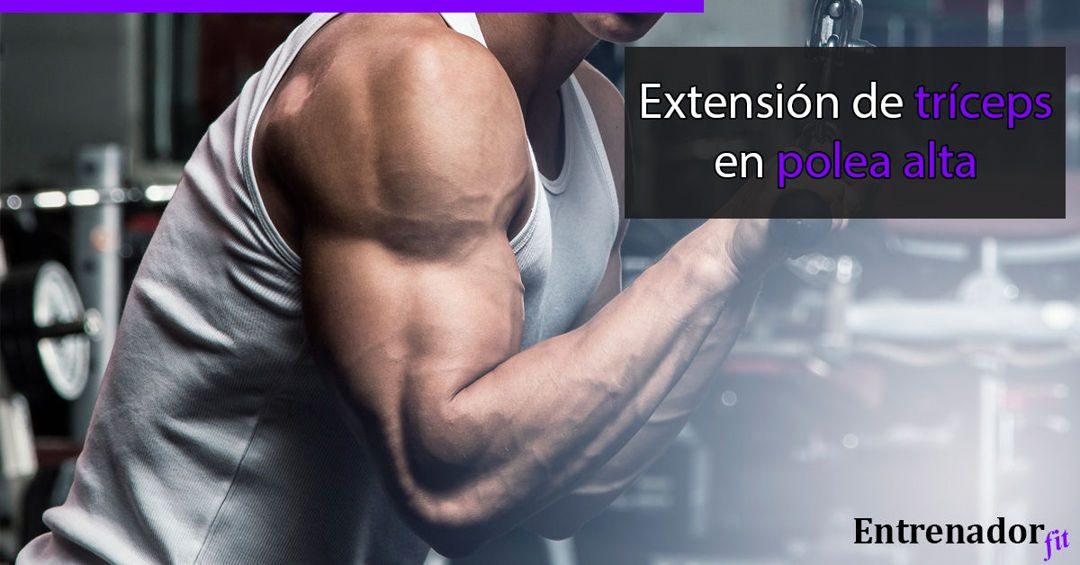 Extensión de Tríceps en Polea Alta